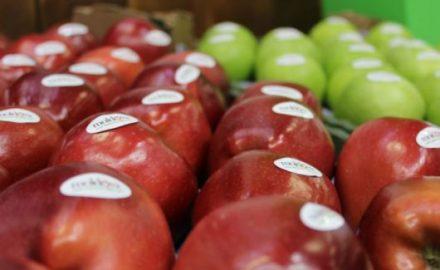 Frutta moldava