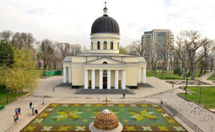 Tappeto di fiori, Cattedrale della Natività
