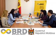 Șefa Biroului relații cu diaspora, Olga Coptu a primit în vizită oficială pe ministrul pentru Românii de Pretutindeni, Natalia-Elena Intotero.
